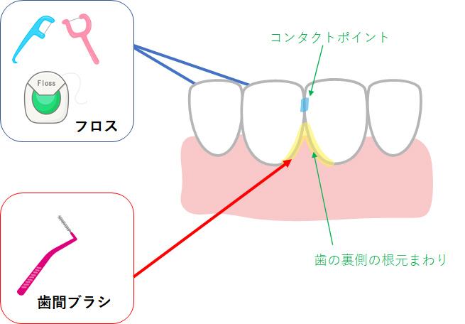 口腔ケアってなんですか?|歯科の豆知識|京都市中京区の歯科|たけち歯科クリニック
